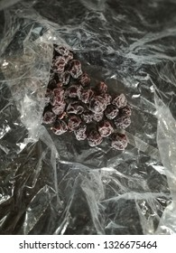 Dried Plum in Clear Bag