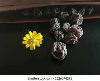 Dried Plum and Yellow Flower