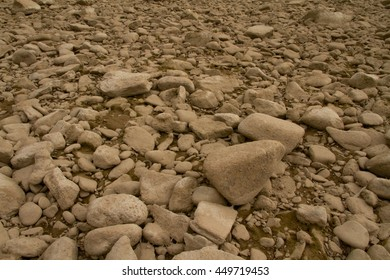 dried up river bed in summer