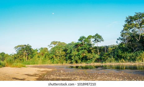 Dried riverbed of River Napo in Ecuadorian section of the Amazonian rainforest, South America
