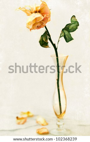 Dried Rose Antique Crystal Bud Vase Stock Photo Edit Now 102368239