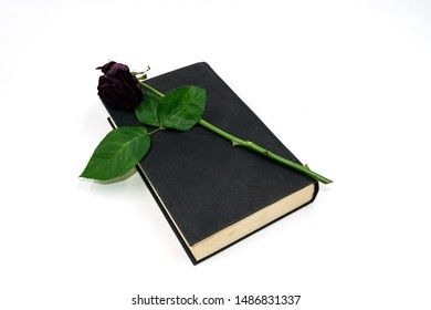 dried up rose on a black book, on white background