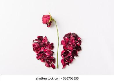 Dried rose petal, broken heart.