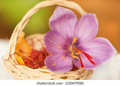 Dried saffron spice in small basket and saffron´s flower