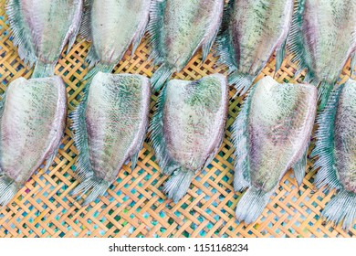 Dried salted leaf fish on wooden sieve, Thai traditional preservative sunlight drying fish.