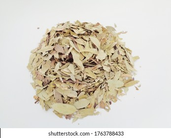 Dried Senna Alexandrina (also called daun jati tiongkok, daun jati china) leaves with white background. This leaves usually used as herbal tea. This tea refreshing and has special aroma.