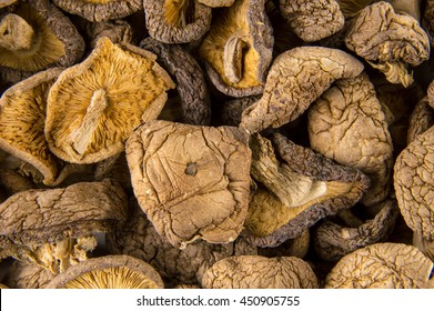 Dried shiitake background