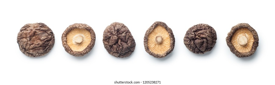 Dried shiitake mushrooms isolated on white background