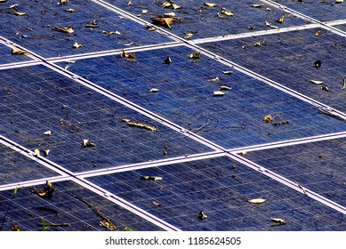 Dried small leaves fall down on the old and dirty solar cell