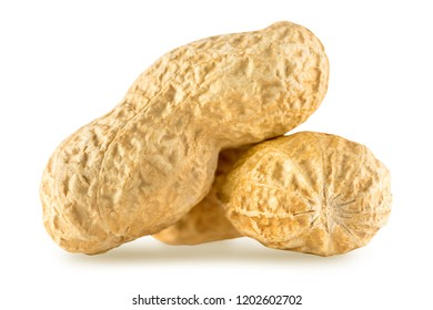 Dried two peanuts isolated on white background. Nuts macro close up.