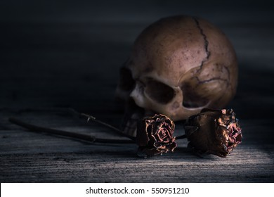dried Valentine's day rose with human skull at back against sullen mood and vintage color tone