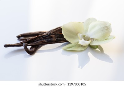 Dried vanilla fruits and orchid flower isolated on white background. Clipping path.