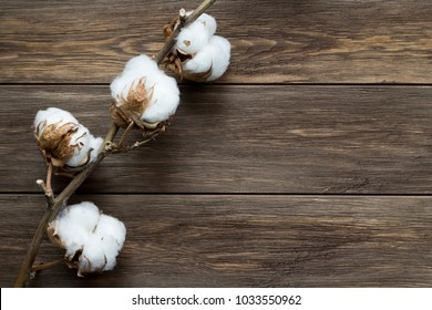 Dried white fluffy cotton flower on wooden background, close up, copy space, top view