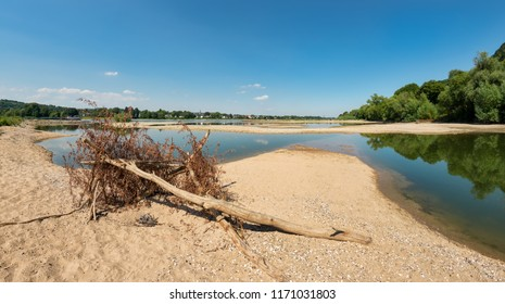Dried-out riverbed with sandbanks and wooden flotsam in the river Rhine with low water level between groins on a sunny day, caused by prolonged drought, North Rhine-Westphalia, Germany, Europe
