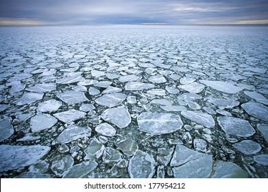 drift ice  in Baltic  sea