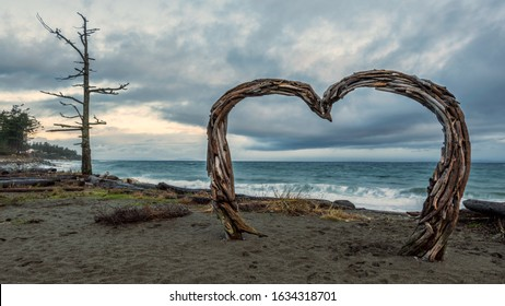 Drift wood heart at Kin Beach Provincial Park in Courtenay British Columbia Canada