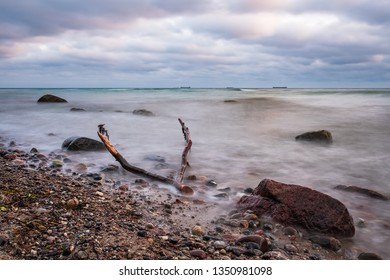 Drift wood on shore of the Baltic Sea.