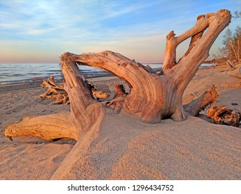 Driftwood along the sandy Lake Superior Beach at sunset in northwoods Michigan
