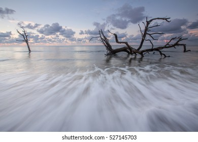 Driftwood Beach in the Morning