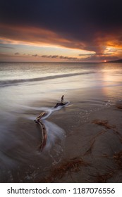 Driftwood with a beautiful sunset