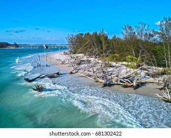 Driftwood on the beach of Beer Can Island on longboat key in Sarasota Florida drone shot