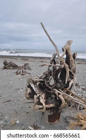 Driftwood on beach in Greymouth, West Coast of New Zealand