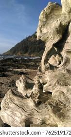 Driftwood Oregon ocean beach