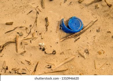 driftwood and plastic lid on a beach