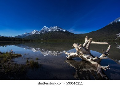 Driftwood in Spray Lake Alberta Canada Kananaskis reflections