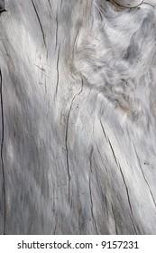 driftwood textured new zealand
