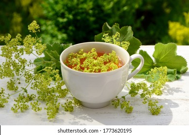 A сup with a drink from alchemilla vulgaris on the table against the background of a garden on a summer day close up