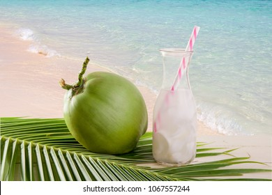 Drink coconut water, Coconut juice