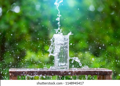 Drink water pouring in to glass over sunlight and natural green background.Water splash  in glass Select focus blurred background.