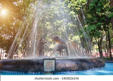 Drinking coyotes statue and fountain in Hidalgo Square in Coyoacan