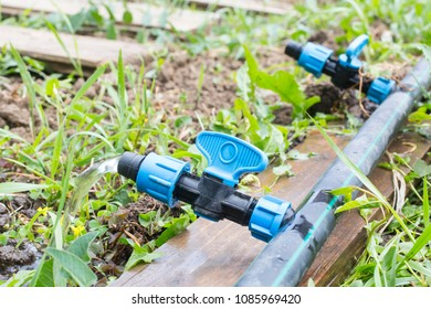 Drip Irrigation System Close Up.