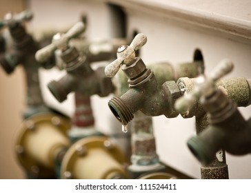 A dripping faucet in a row of faucets / spigots.