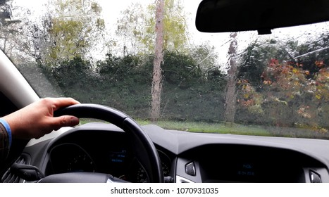 drive the car for work and leisure