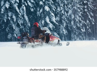 Driver man riding on a snowmobile through the snow in a snowy forest trees
