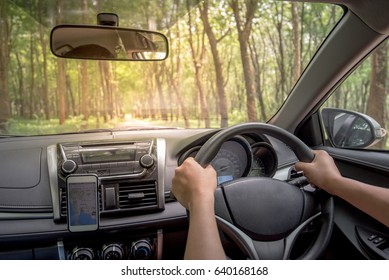 Driver's hands on the steering wheel inside of a car with beautiful road in the green forest perspective, road trip travel concepts