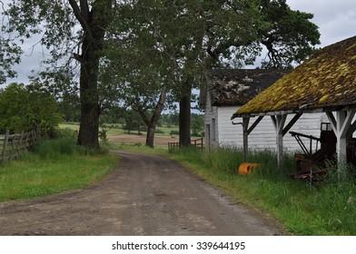 Driveway to farmhouse