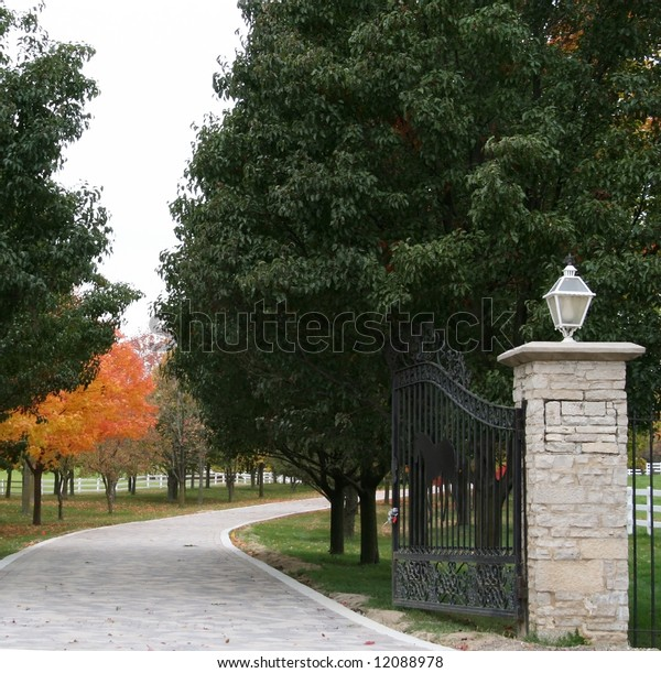 Driveway lined with fall trees