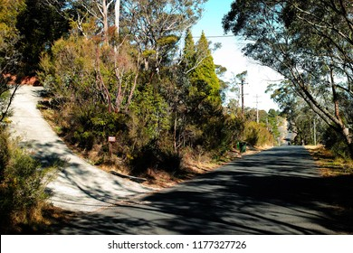 Driveway on suburban street with trees. Village road in a forest in Katoomba, Blue Mountains, Australia.
