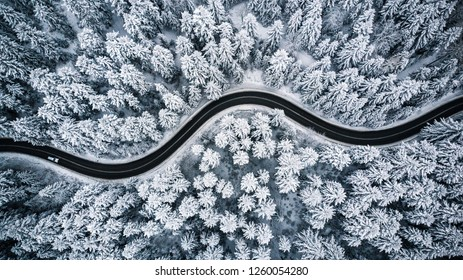 Driving in forest after snowfall, aerial drone view.
