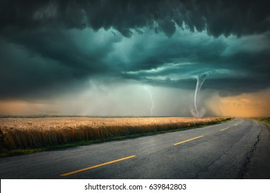 Driving on asphalt road towards the dangerous tornado storm with lightning bolt through the cultivated fields of wheat crops.