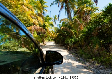 Driving through the jungle in the Sian Kaan reserve, Quintana Roo, Mexico