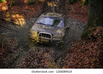 Driving through puddle with splash of mud. Dirty offroad car with fall forest on background on sunny day. SUV covered with mud stuck in dirt on path covered with leaves. Rally competition concept.