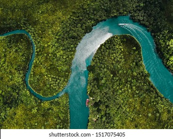 drone aerial birds eye view of a large green grass forest with tall trees and a big blue bendy river flowing through the forest in bohol Island in the Philippines