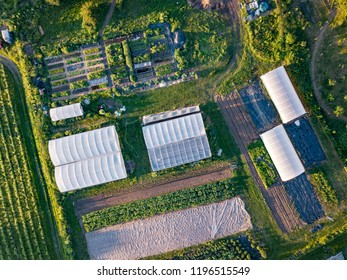 Drone aerial photography of an organic inner city farm taken at sun set in London. Polytunnels, agricultural buildings and farmland taken on the outskirts of a city.