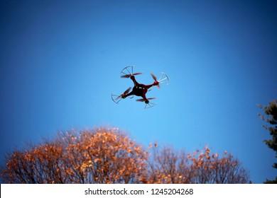 Drone Blue Sky Fly Autumn Tree