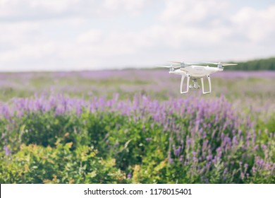 Drone flying under the violet wildflowers field. Photo of drone in the air with beautiful wildf lowers background. Drones in agriculture.